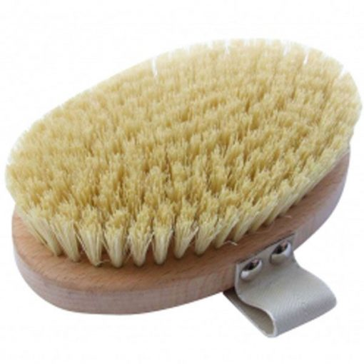 Body Brush Long Handle